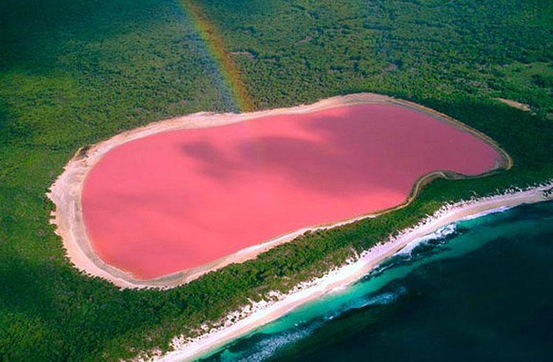 Lake Hillier Wikipedia