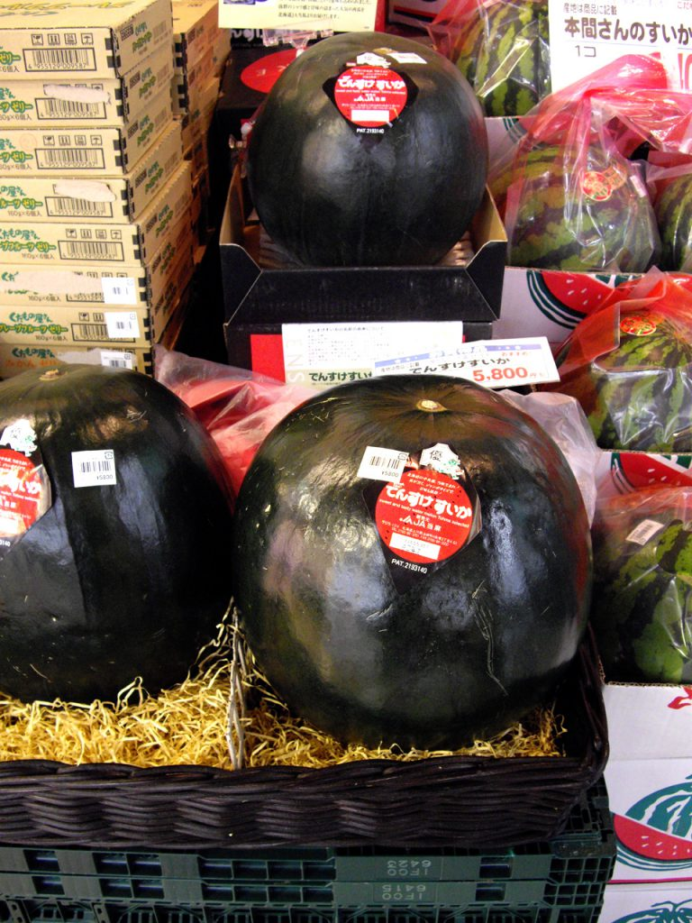 Photo credit: By [puamelia] (Flickr: Densuke watermelon) [CC BY-SA 2.0 (http://creativecommons.org/licenses/by-sa/2.0)], via Wikimedia Commons