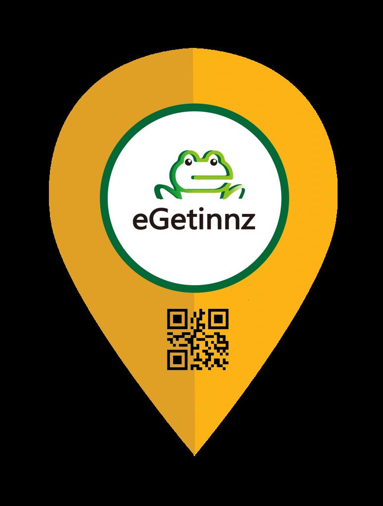 Revised eGetinnz Pin