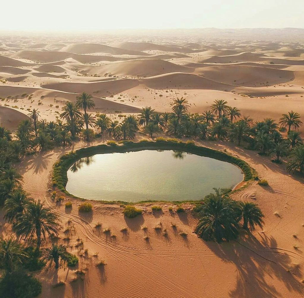 Oasis, Abu Dhabi,United Arab Emirates